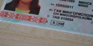 Какие бывают водительские права в Беларуси 2019. Категории управления